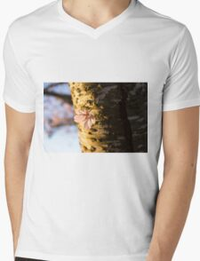 Petals and Scars Mens V-Neck T-Shirt