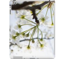 Radiant Blossoms iPad Case/Skin