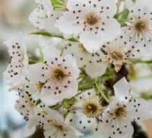 Speckled Blossoms Sticker