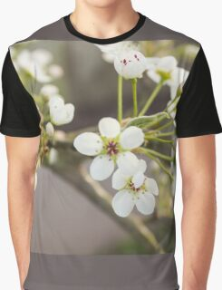 White Spring II Graphic T-Shirt