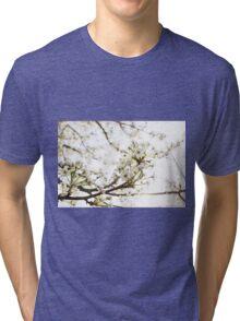 White Blossom II Tri-blend T-Shirt
