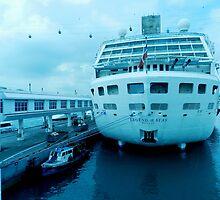 Legend of the Seas    Singapore by sandysartstudio