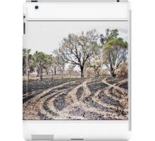 SOFT LANDSCAPE 3 iPad Case/Skin