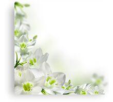 White Bell Canvas Print