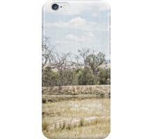 SOFT LANDSCAPES 2 iPhone Case/Skin