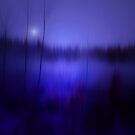 THE COLD MIST IN THE FOREST by leonie7