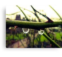Water droplet reflection Canvas Print