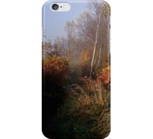 Perfect Autumn Morning iPhone Case/Skin