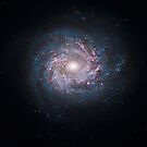 Face-on spiral galaxy NGC 3982. by StocktrekImages