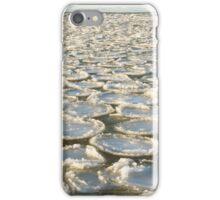 Sea pancakes iPhone Case/Skin