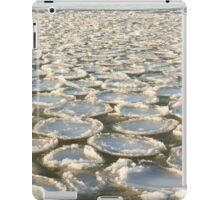 Sea pancakes iPad Case/Skin