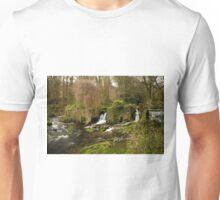 Kearsney Abbey Falls Unisex T-Shirt