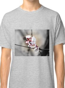 The first apricot blooms Classic T-Shirt