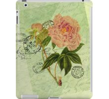 Decoupage 4 iPad Case/Skin