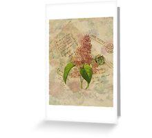 Decoupage 3 Greeting Card