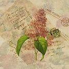 Decoupage 3 by venitakidwai1