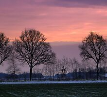 Sunset in Winter by ienemien