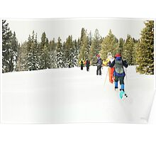 Snowshoe Water Color Affect Poster