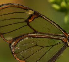 Crystal butterfly Sticker