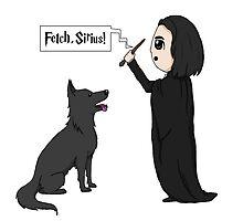 Fetch, Sirius! by laurenpanda12