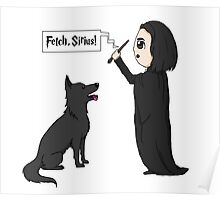 Fetch, Sirius! Poster