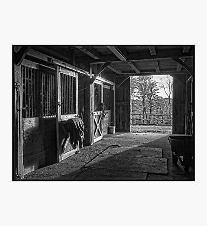 Inside the Horse Barn Black and White Photographic Print