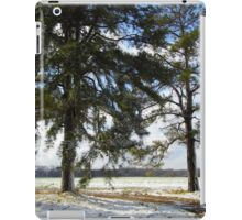 Snow And Two Trees iPad Case/Skin