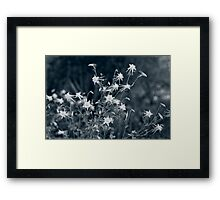 My Lonely Nights Are Over  Framed Print