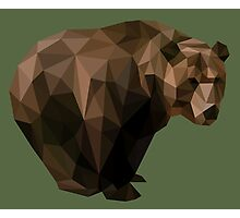 Low Poly Brown Bear Photographic Print