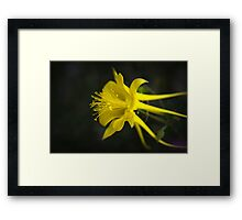My Love For You Will Last Framed Print