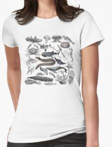 Vintage Ocean Drawing Compilation Womens Fitted T-Shirt