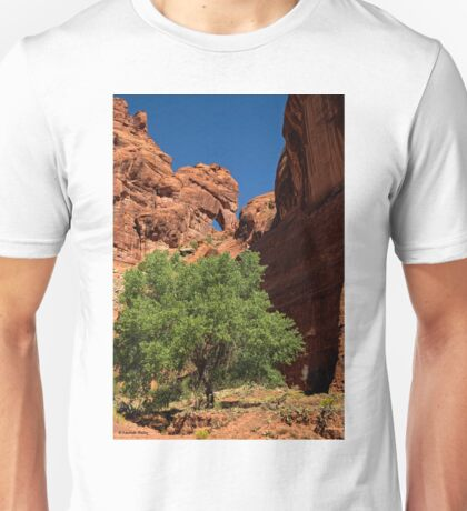 The Tree and the Window Unisex T-Shirt