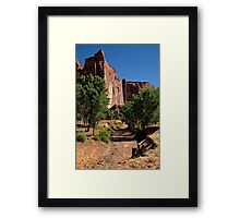 Beauty in the Canyon Framed Print