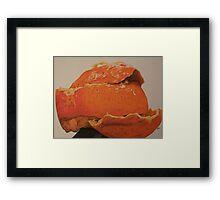 Orange You Glad Framed Print