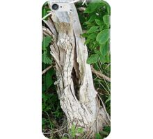 Decayed Tree Stump iPhone Case/Skin