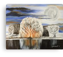 White Willow Canvas Print