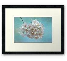 Ode to Spring Framed Print