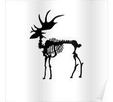 Moose Bones Poster