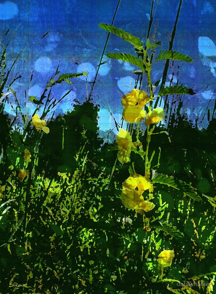 Yellow Wildflowers by Shawna Rowe