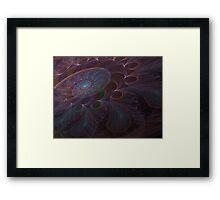 Paisley Framed Print