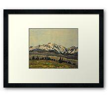 Gore Range Framed Print