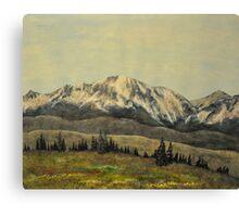 Gore Range Canvas Print