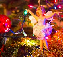 Sugar Plum Fairy I by DustyHolidays