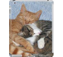 Sleeping Sweeties iPad Case/Skin