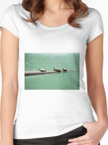Three Turtles In The Sun Women's Fitted Scoop T-Shirt