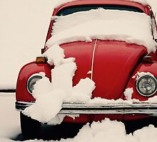 Winter Reds by LaSell