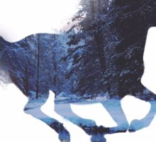 Galloping Horse - Forest Graphic Sticker