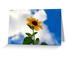 Sunflower in the Clouds 1 Greeting Card