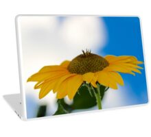 Sunflower in the Clouds 2 Laptop Skin