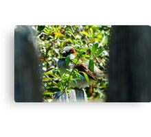SPARROW ON A WOODEN FENCE Canvas Print